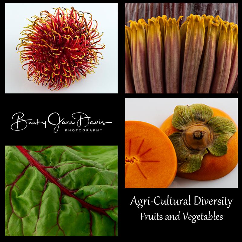 Agri-Cultural-Diversity-Project