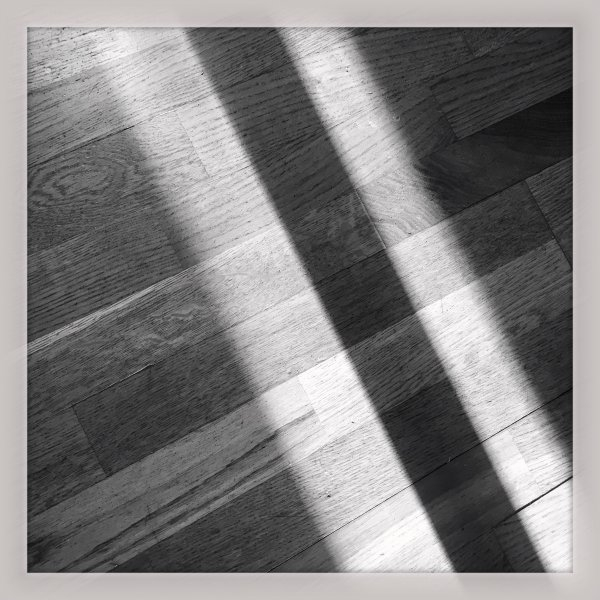 Morning Sun Shadows