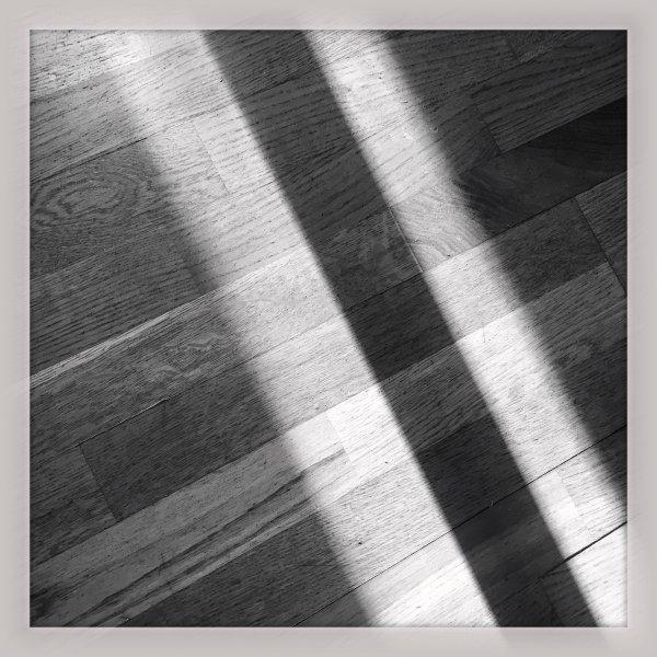 Morning Sun Shadows