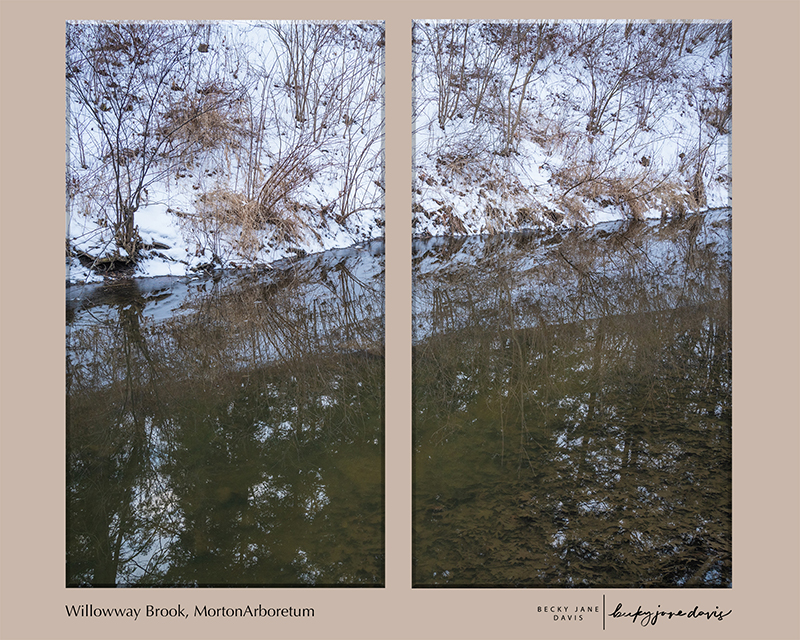 Willowway Brook Diptych