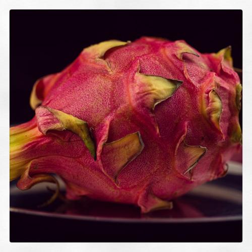 dragonfruit_IMG_2699