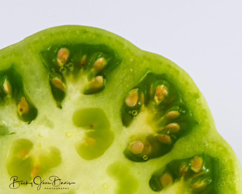 Green-Heirloom-Tomato-closeup