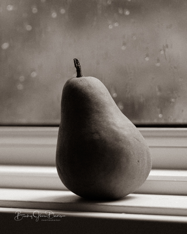 Bosc Pear on Windowsill