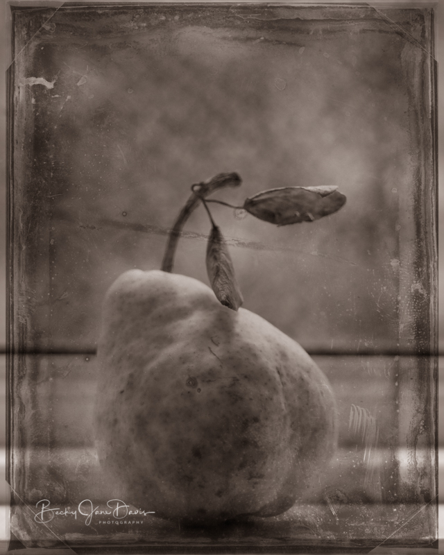 Grunge Pear on Windowsill