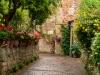 Pienza_12-garden