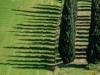 SanQuirico_05-cypress-pattern