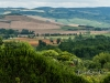 SanQuirico_11-overview