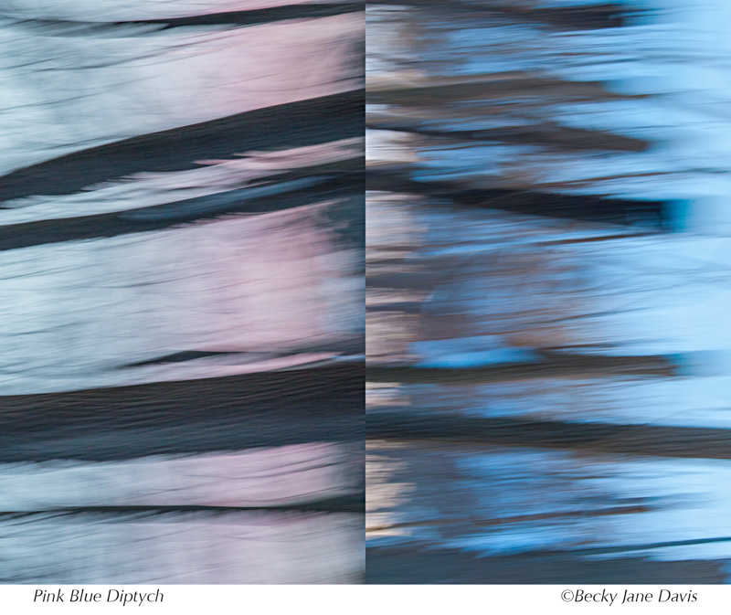Pink blue Diptych