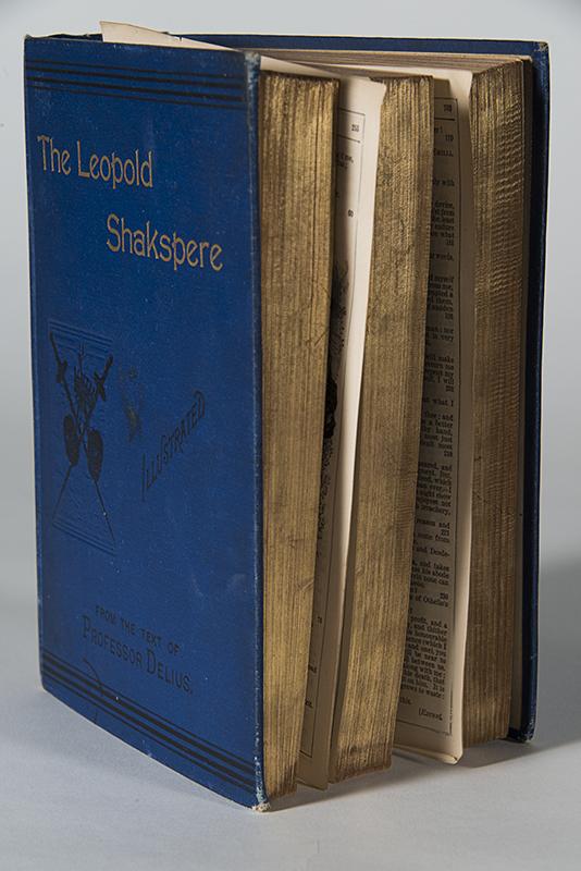 Gertrude Shakspere book