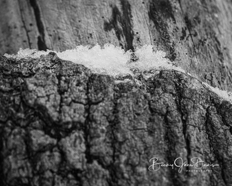 Snow Ice 5