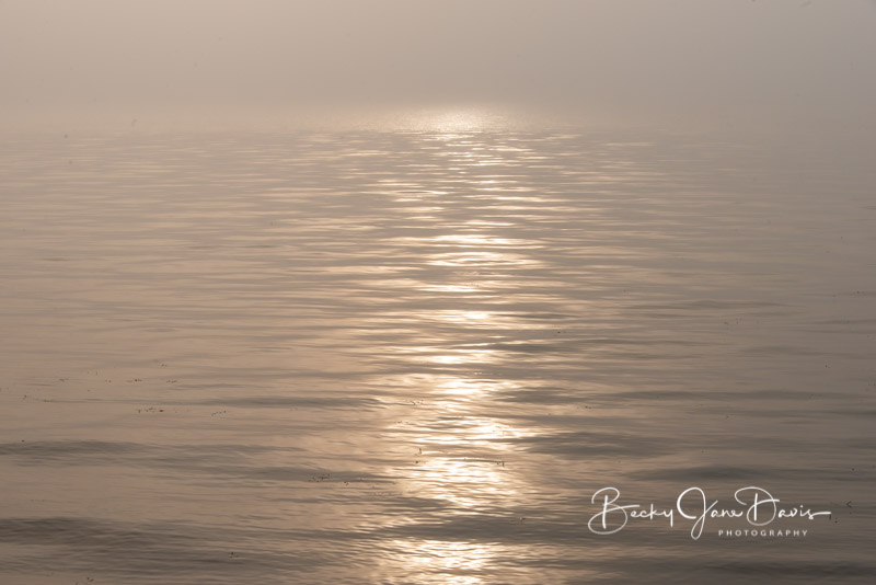 sunrise-fog_0004