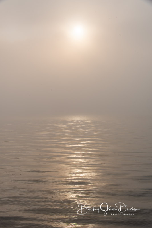 sunrise-fog_0009