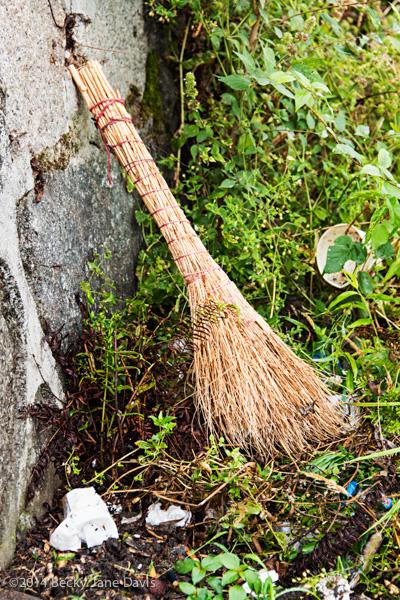 Three Gorge Broom