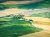 Bagnoregio_07-valley