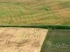 SanQuirico_13-fields