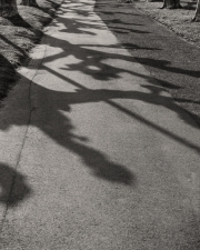 BJD_Shadows_02