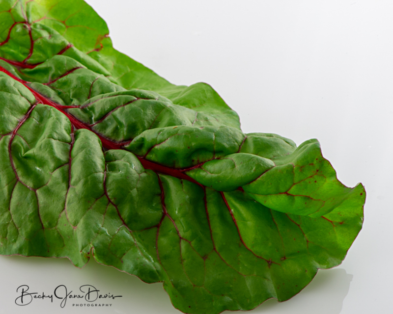 Swiss-Chard-leaf